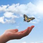 22を超えるとは – それはサナギから蝶へと変わる時