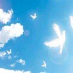 自尊他尊が平和への道 – 自尊他卑や自卑他尊は改めるべき