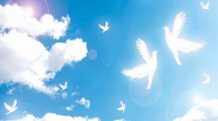 自尊他尊の平和