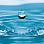 水を想い、自ら水になる  – すべての水に感謝と思いやりを
