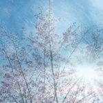 """<span class=""""title"""">春の嵐は完成に向かう神仕組みの開始 – 新しい世界はもうすぐ</span>"""